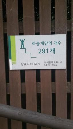 Чтобы добраться до Небесного парка, нужно преодолеть 291 ступеньку... Ну что ж... На старт, внимание... ГО!
