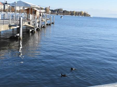 Пересекаем Боденское озеро
